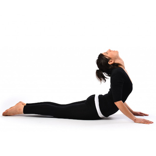 Live Online Yoga Classes Online Yoga Classes From India Go Online Now